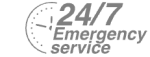 24/7 Emergency Service Pest Control in Greenwich, SE10. Call Now! 020 8166 9746